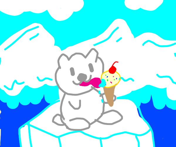 polar bear enjoying an icy treat!