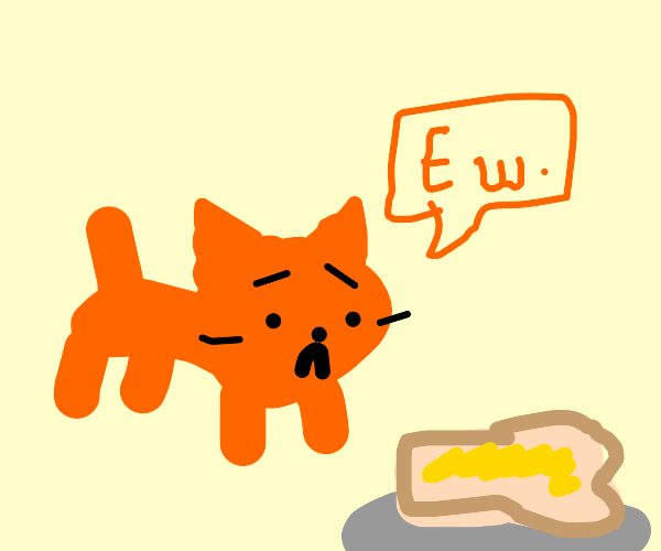cat hates buttered bread