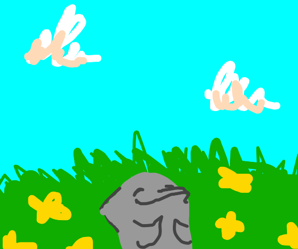 dolphin takes a nap in a field of flowers