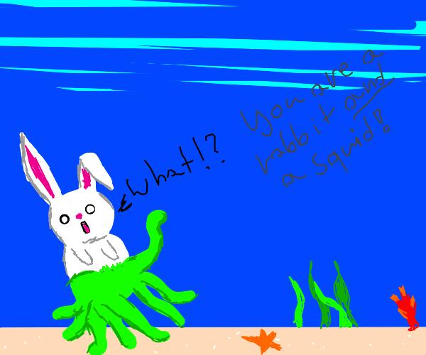 Traumatized rabbit squid hybrid