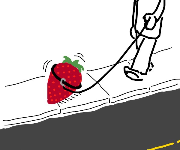 Pet Strawberry