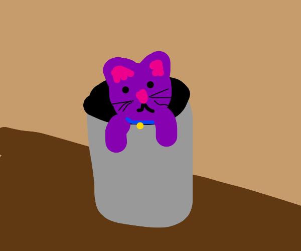 purple cat is stuck in a trash bag