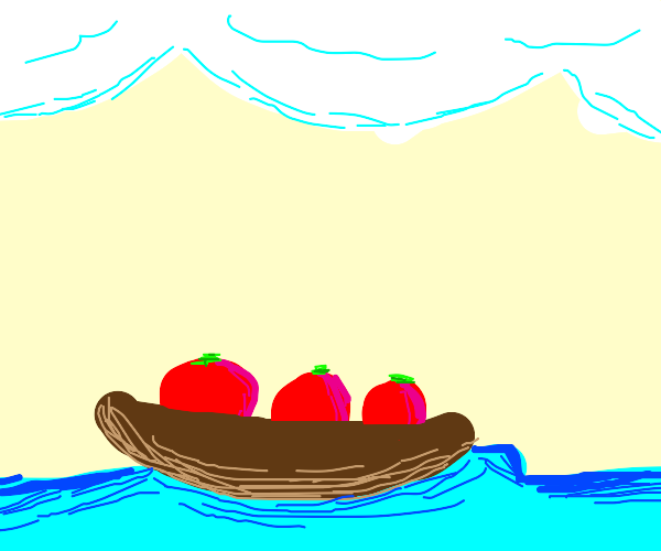 Tomatoes in a row boat