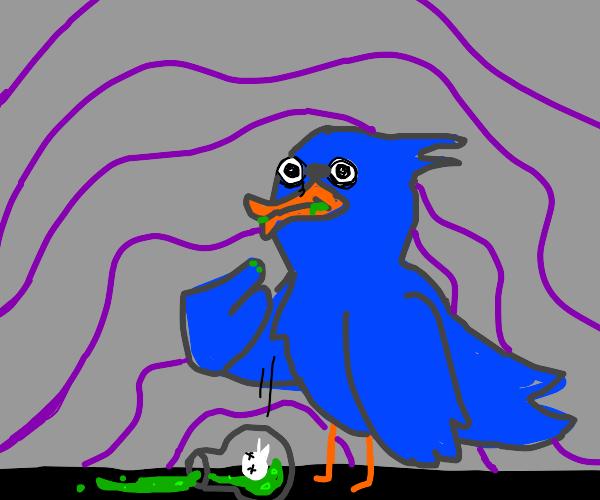 bird getting poisoned
