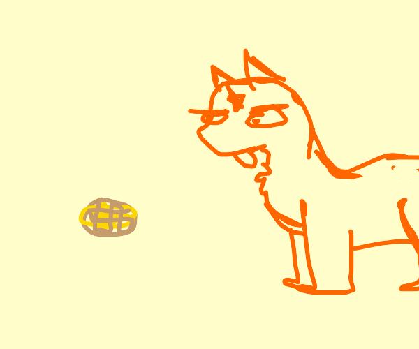 Firestar doesn't like waffles