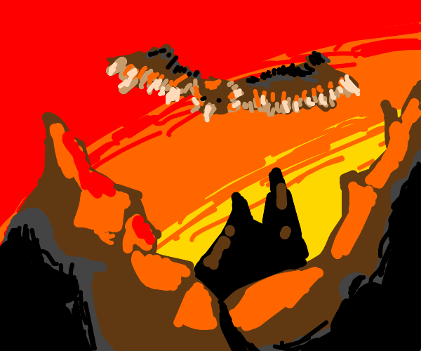 Vulture flying over mountains with sunset