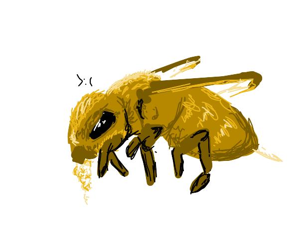 Rabid bees