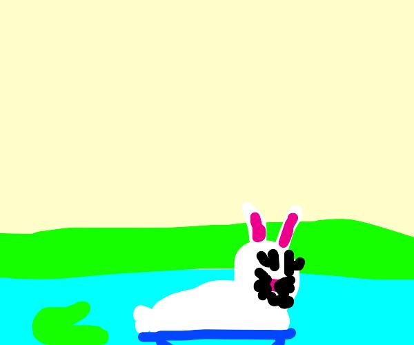 Rabbit swimming in a lake