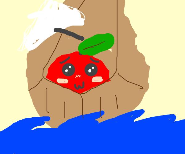 tomato voyage on the open seas