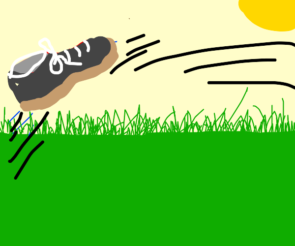 A Shoe jumping over a Lawn