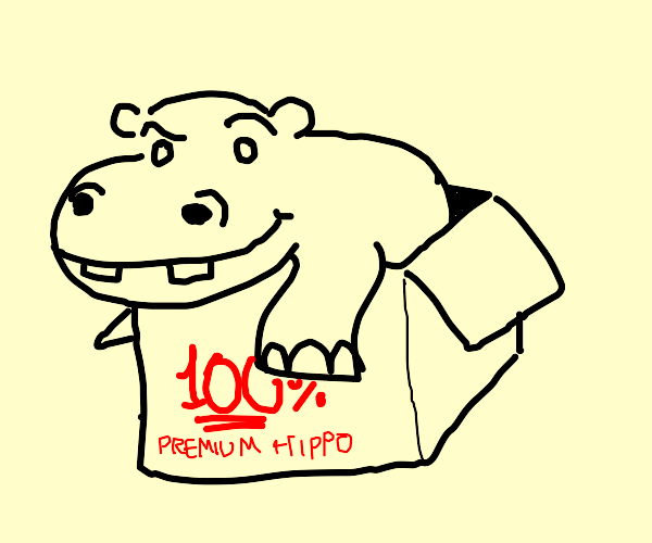 Wow perfect hippo in a box
