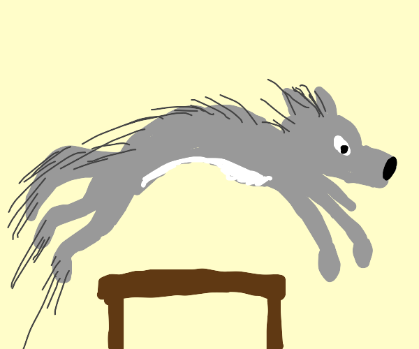 Wolf jumps over a table.