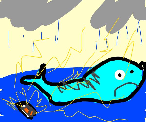whale plays drawception
