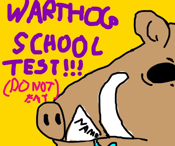 Warthog School Test???