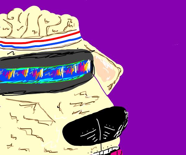 Disco tech pupper