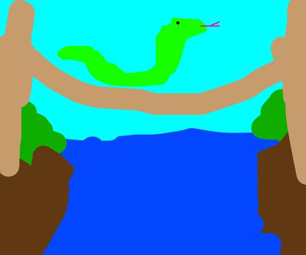 Snake crossing a Bridge