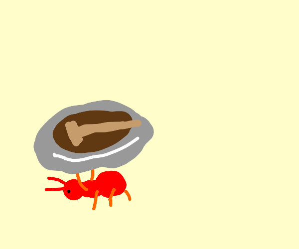 Ant holding human sized plate with steak