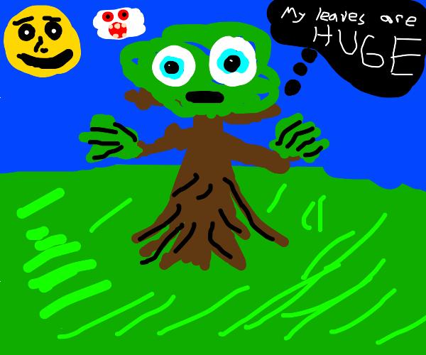 Tree hallucinating