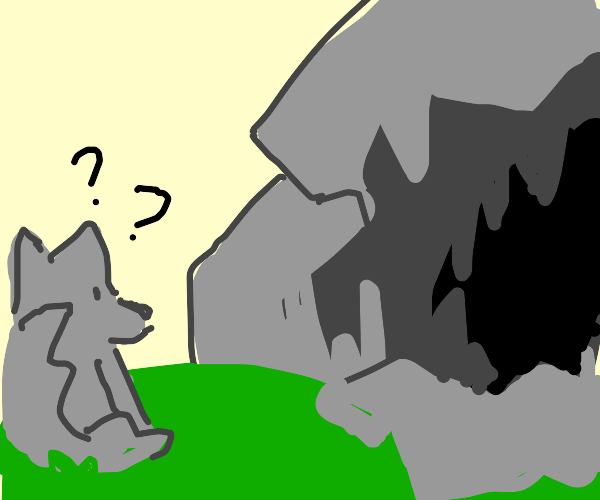 Wolf questions the cave
