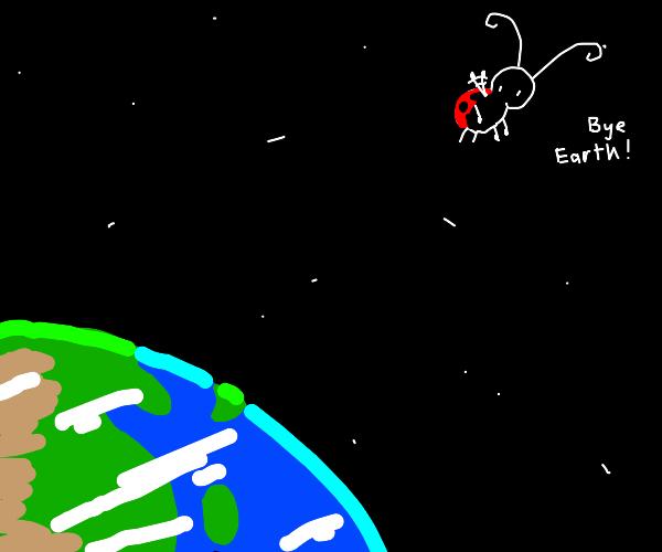 Ladybug leaves the Earth