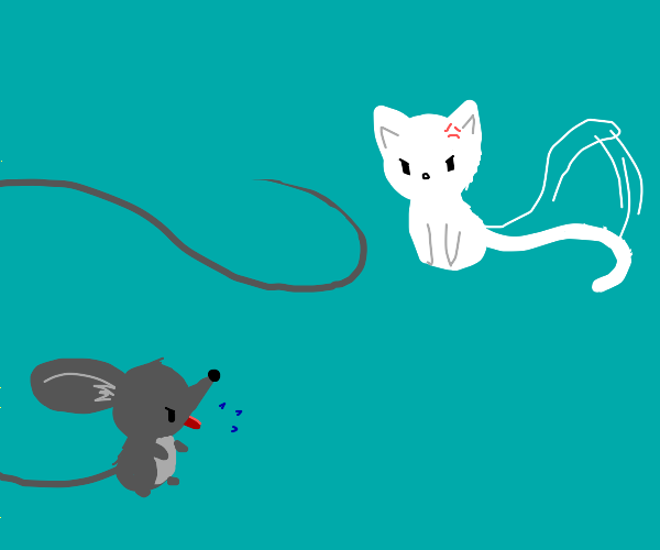 Mouse taunting a cat