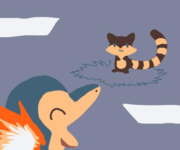 Pokémon battling a raccoon