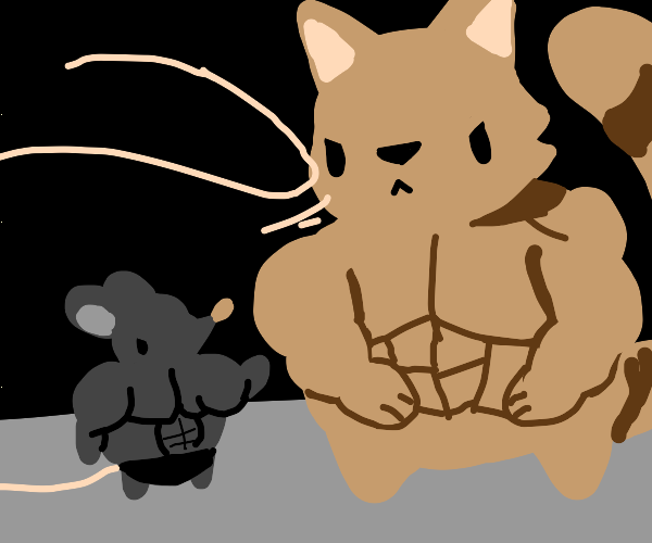 Buff animal fight