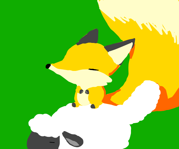Master fox is zen on top of a sheep