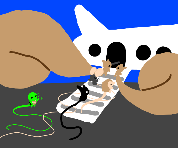 Animals getting in the airplane