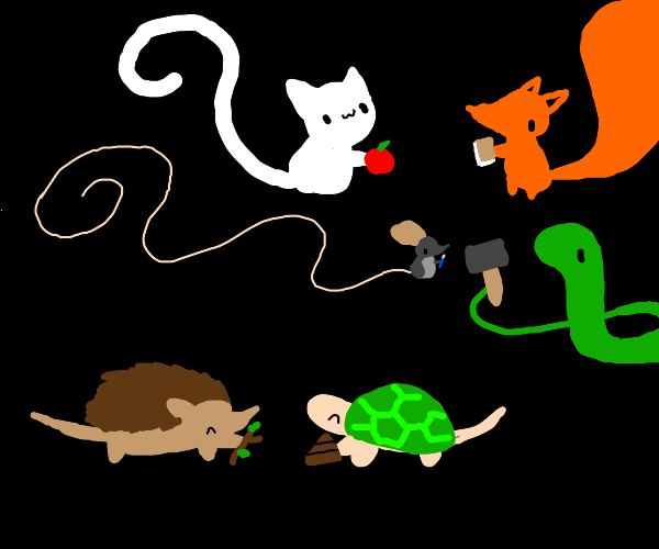 6 different animals holding 6 different items