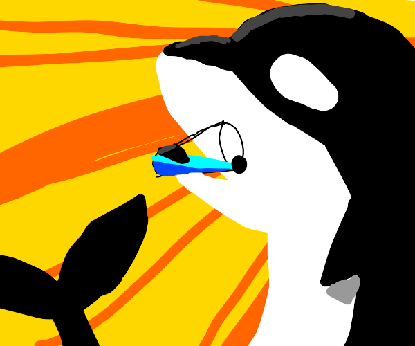Orca drinks a glass of water