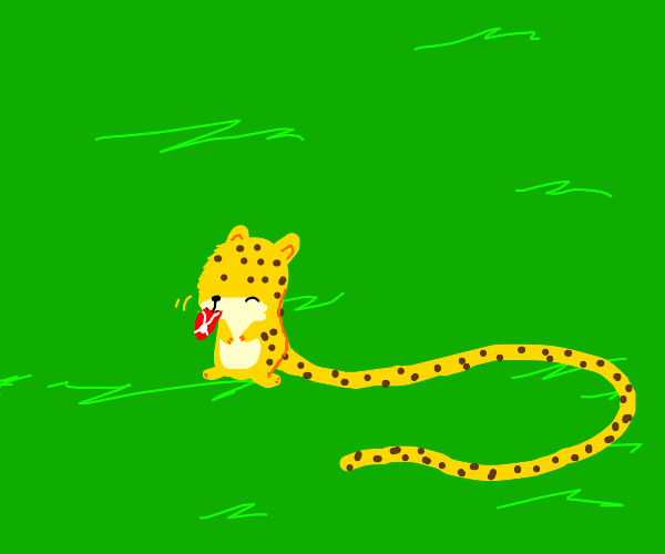 Leopard chewing on a steak