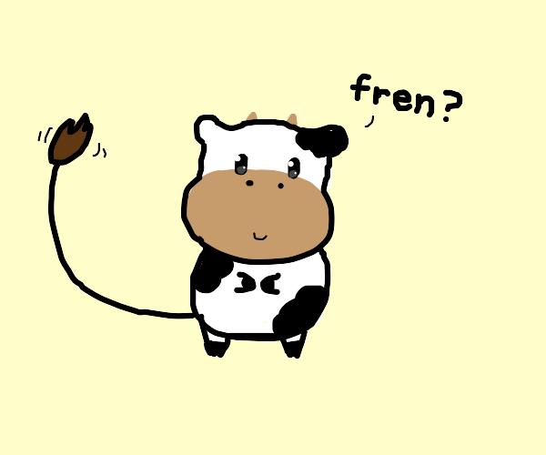 the cow wants a frien