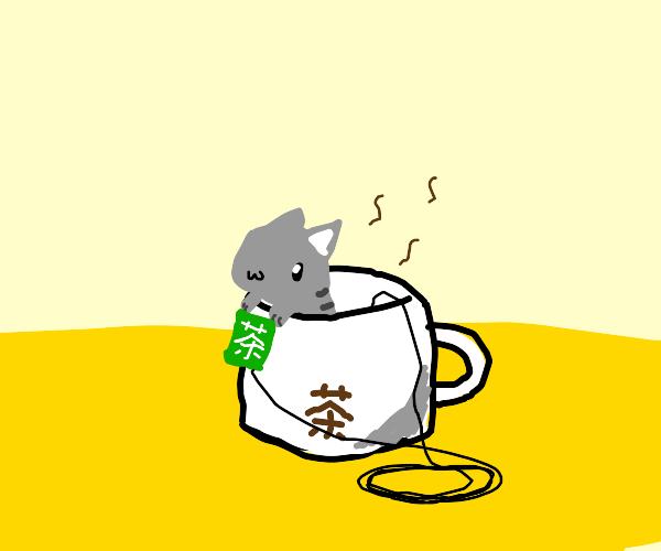 OwO Kitten Teabag