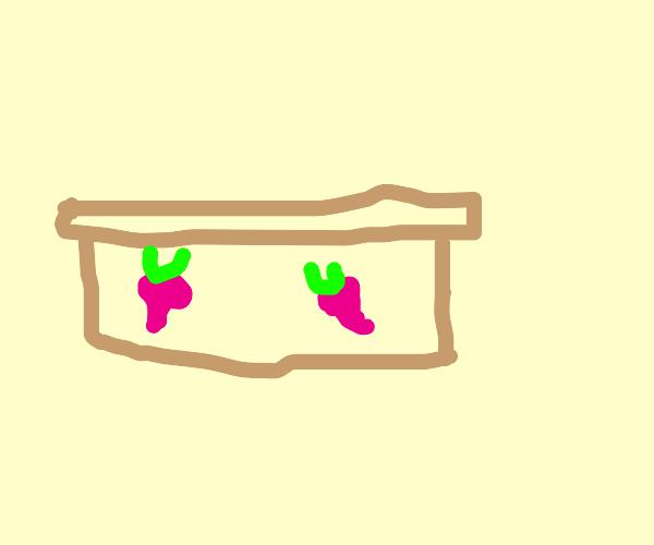 Radish Box Art
