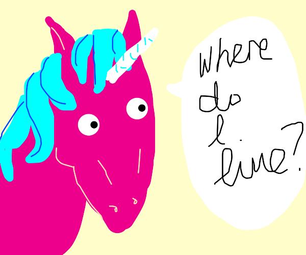 "pink unicorn asks ""where do i live?"""