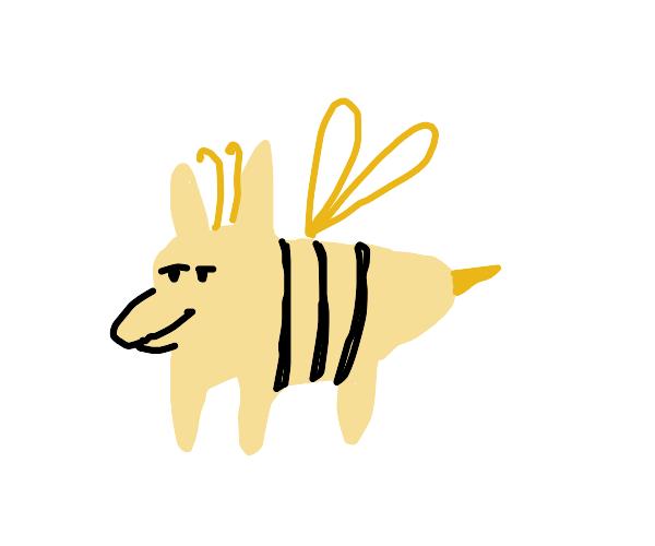 Baby Yellow Bee Dog