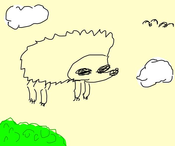 flying hedgehog (not sonic)
