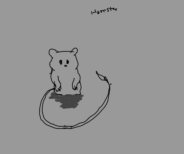 Tiny hamster with a very long tail