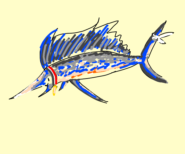 Pet Sailfish