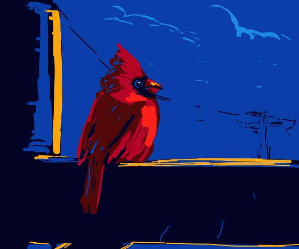 Cardinal on a telephone pole