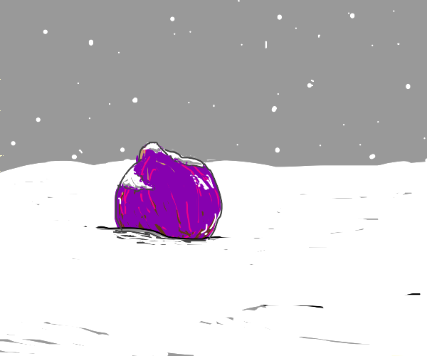 A Purple Onion in the snow