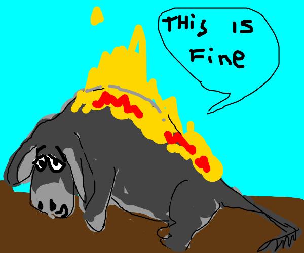 Donkey on fire