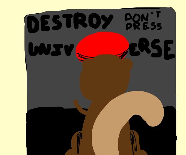 Squirrel destroys the universe