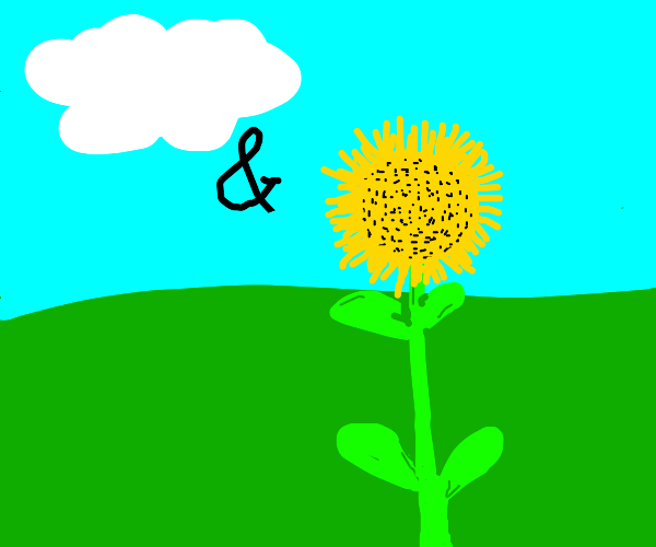 cloud and sunflower