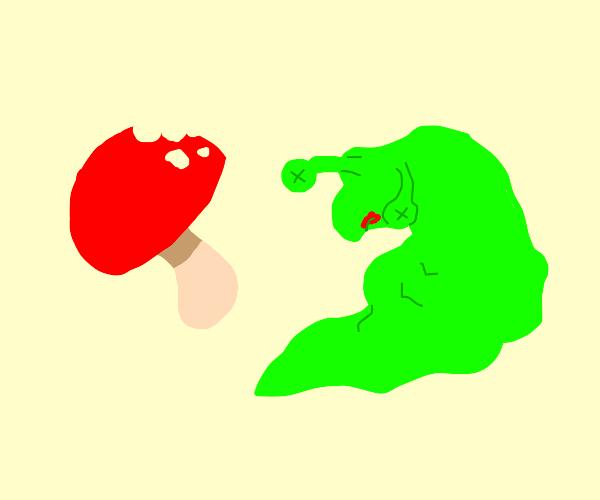 Slug ate the wrong mushroom