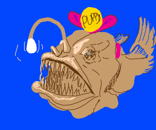 Pet Anglerfish