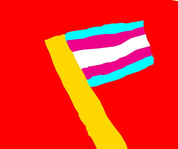 Trans pride!