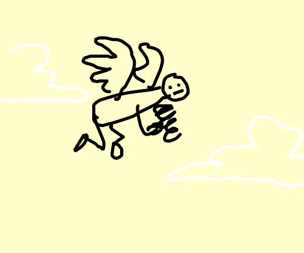 Flying with a Spring