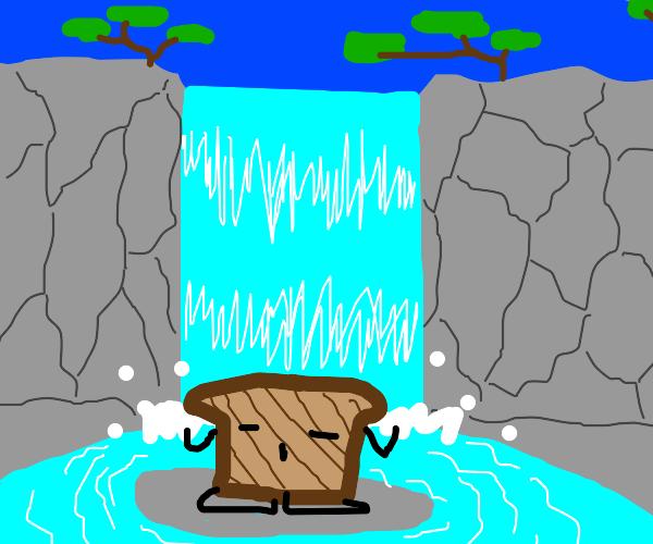 toast meditating under waterfall
